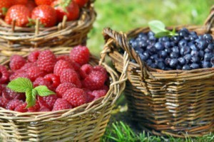 berries1-300x200